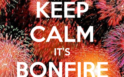 Top 10 Bonfire Night Tips